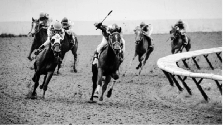 How To Bet On Horse Racing Online